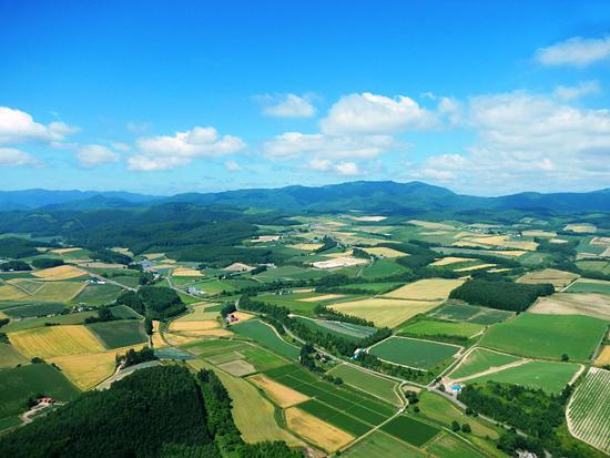 上空からの景色3