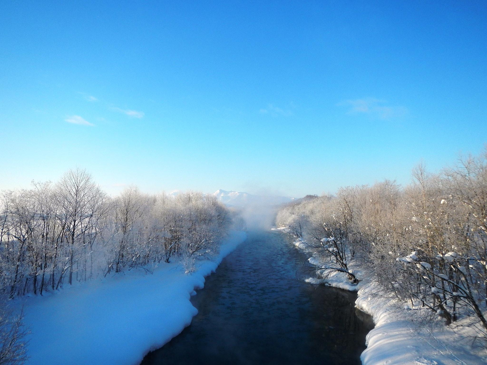 河原に発生した毛嵐